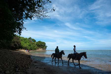 A Pikitim adorou o seu passeio a cavalo pela praia