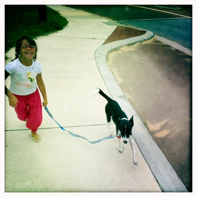 Pikitim a passear o cão da nossa anfitriã em Perth, Western Australia